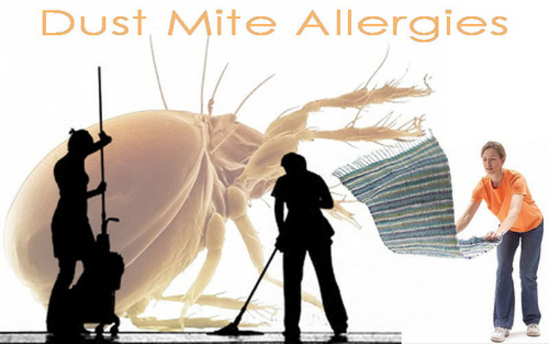 Cleaning Tips to Make Allergy-Free Home for Your Kids