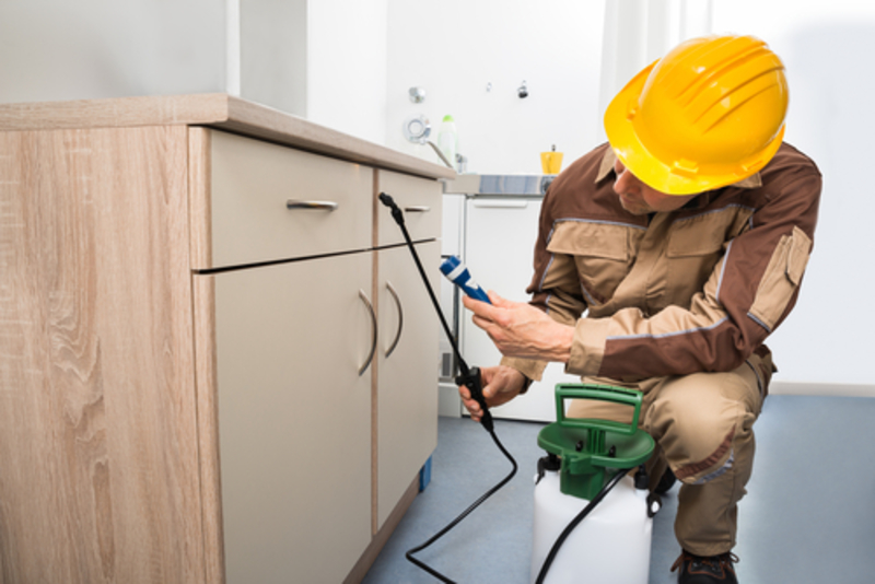 Pest control company